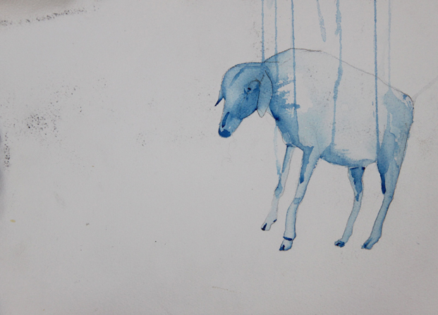 sheep drawing art