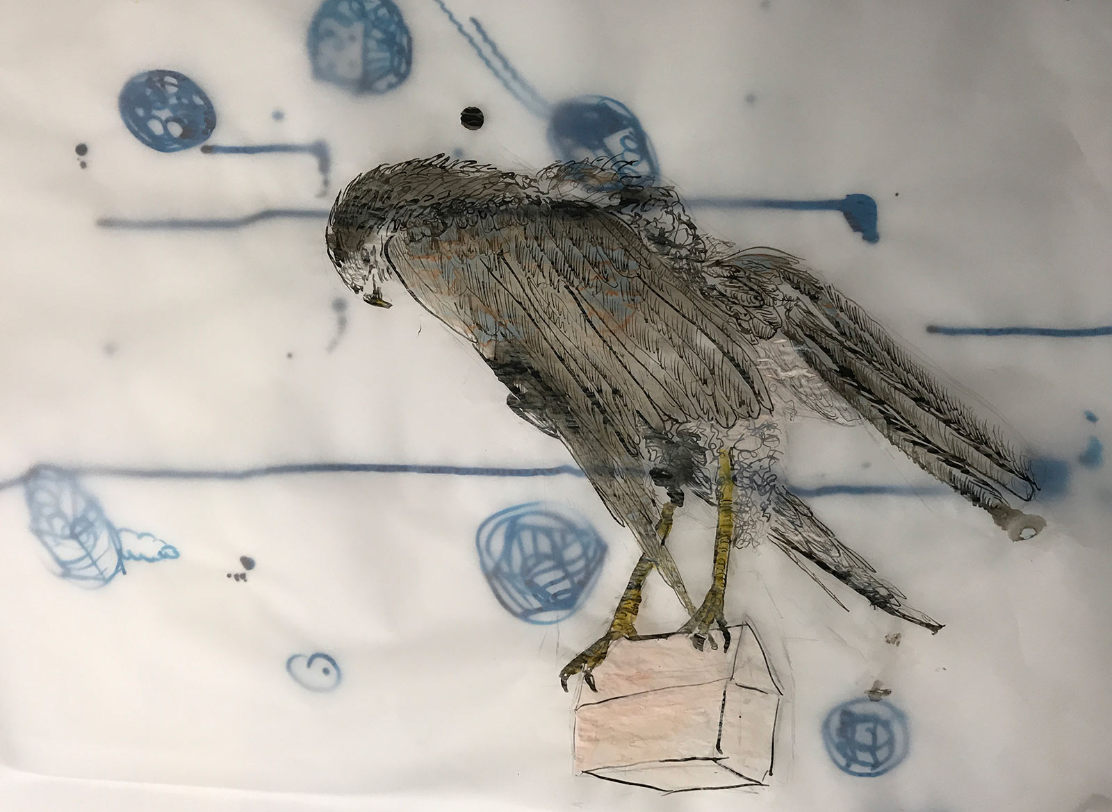 buzzard art collage drawing