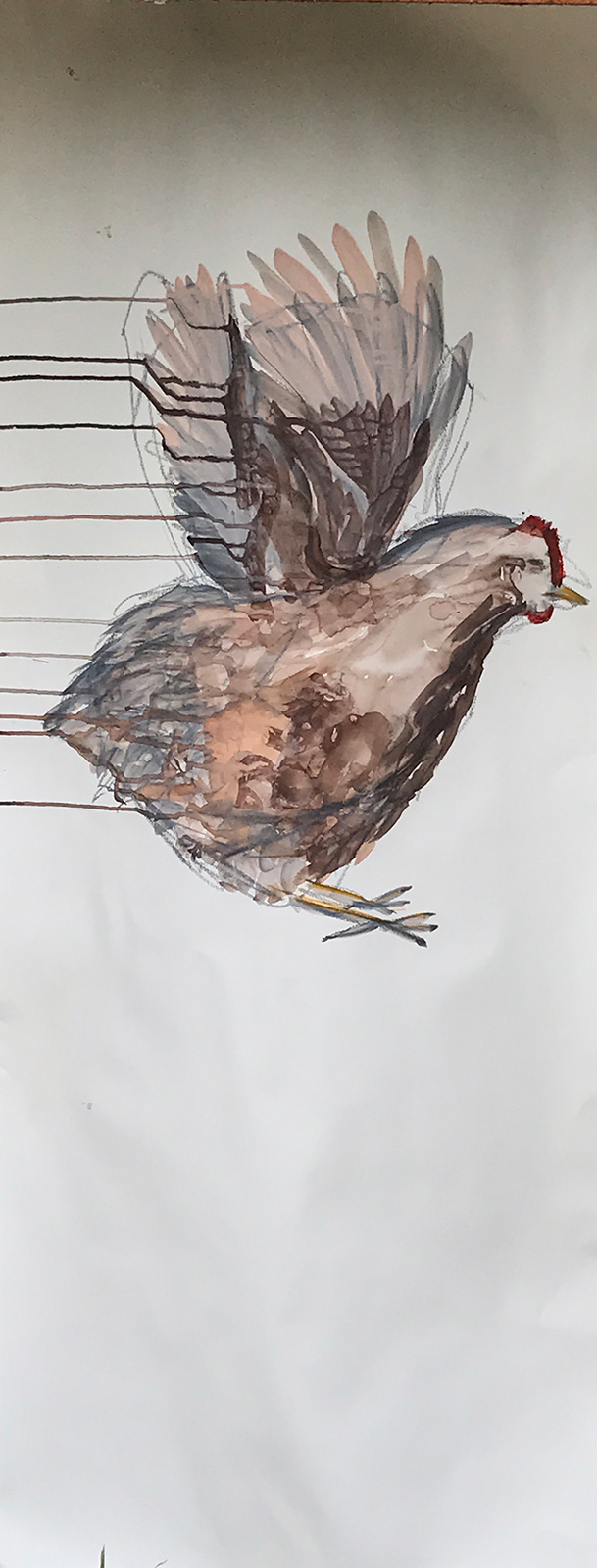 Everything is flying, 2016. Ink on paper, ca 48 x 122 cm.
