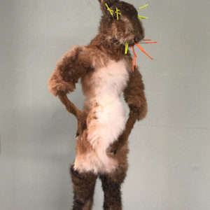 taxidermy art hare girl