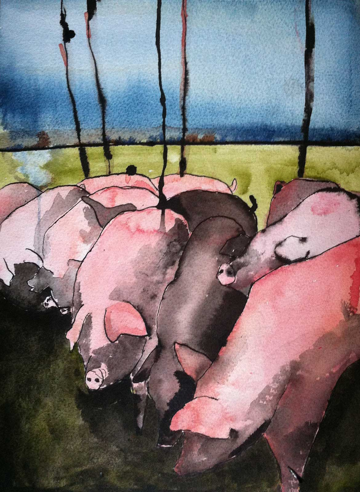 watercolor ink pigs art