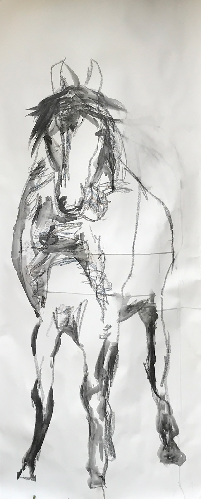 horse drawing art