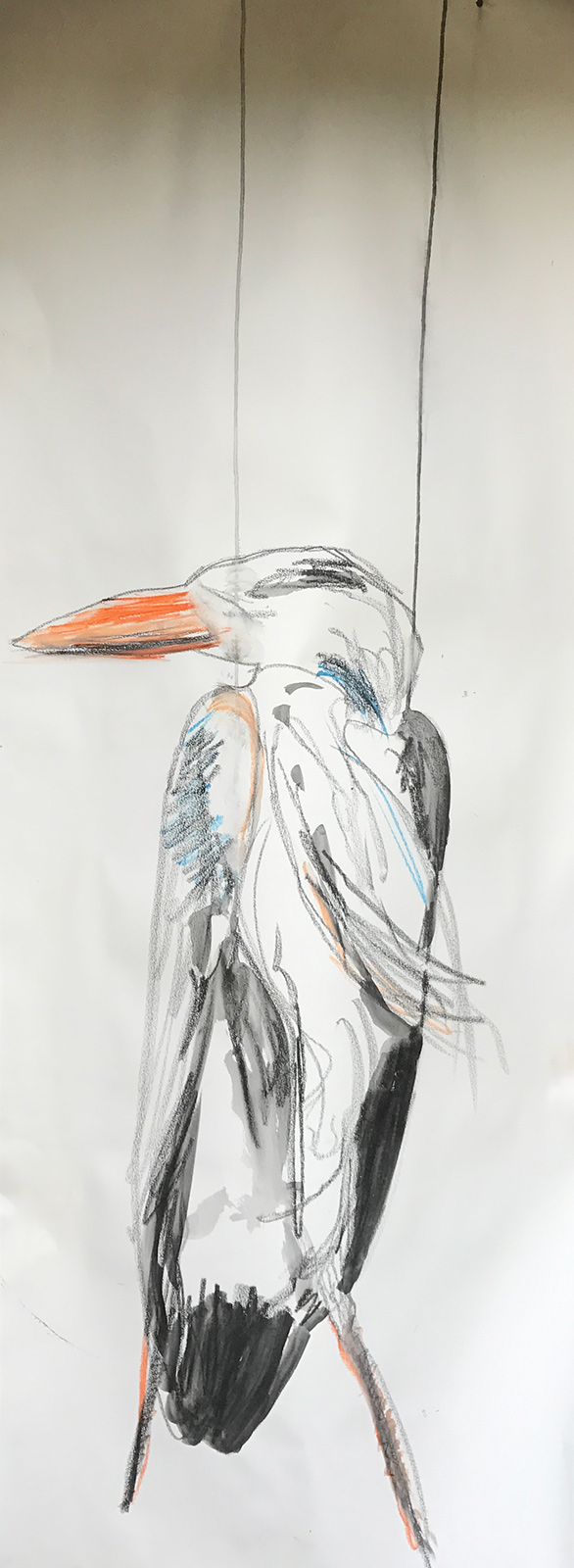 heron big draw art